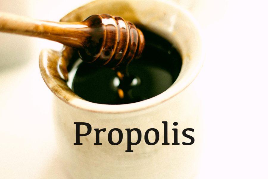 Propolis – naturalny antybiotyk, zrób go sam/a! Łatwy i szybki przepis.